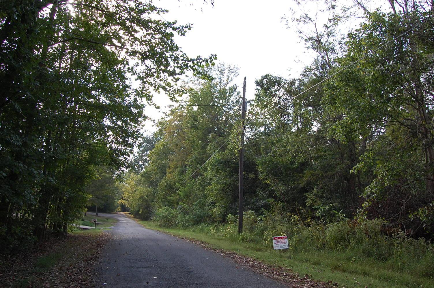 Half Acre Lot Near Cumberland River - Image 3