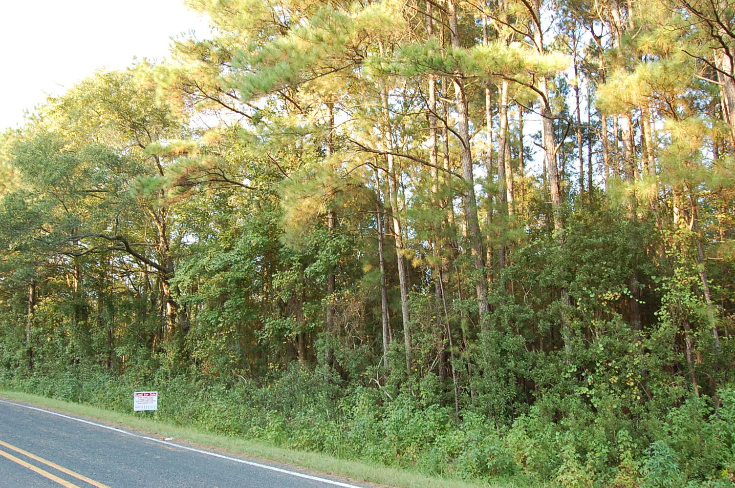 Large Lot in Beautiful North Carolina Countryside - Image 6