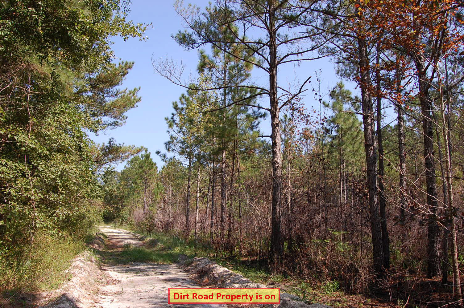 One Acre Property Minutes from the Topsail Beach - Image 2