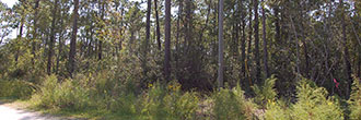 One Acre Property Minutes from the Topsail Beach