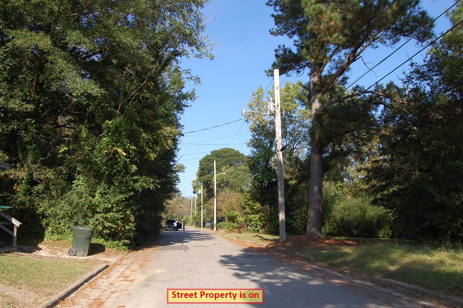 Green North Carolina Neighborhood Getaway - Image 4