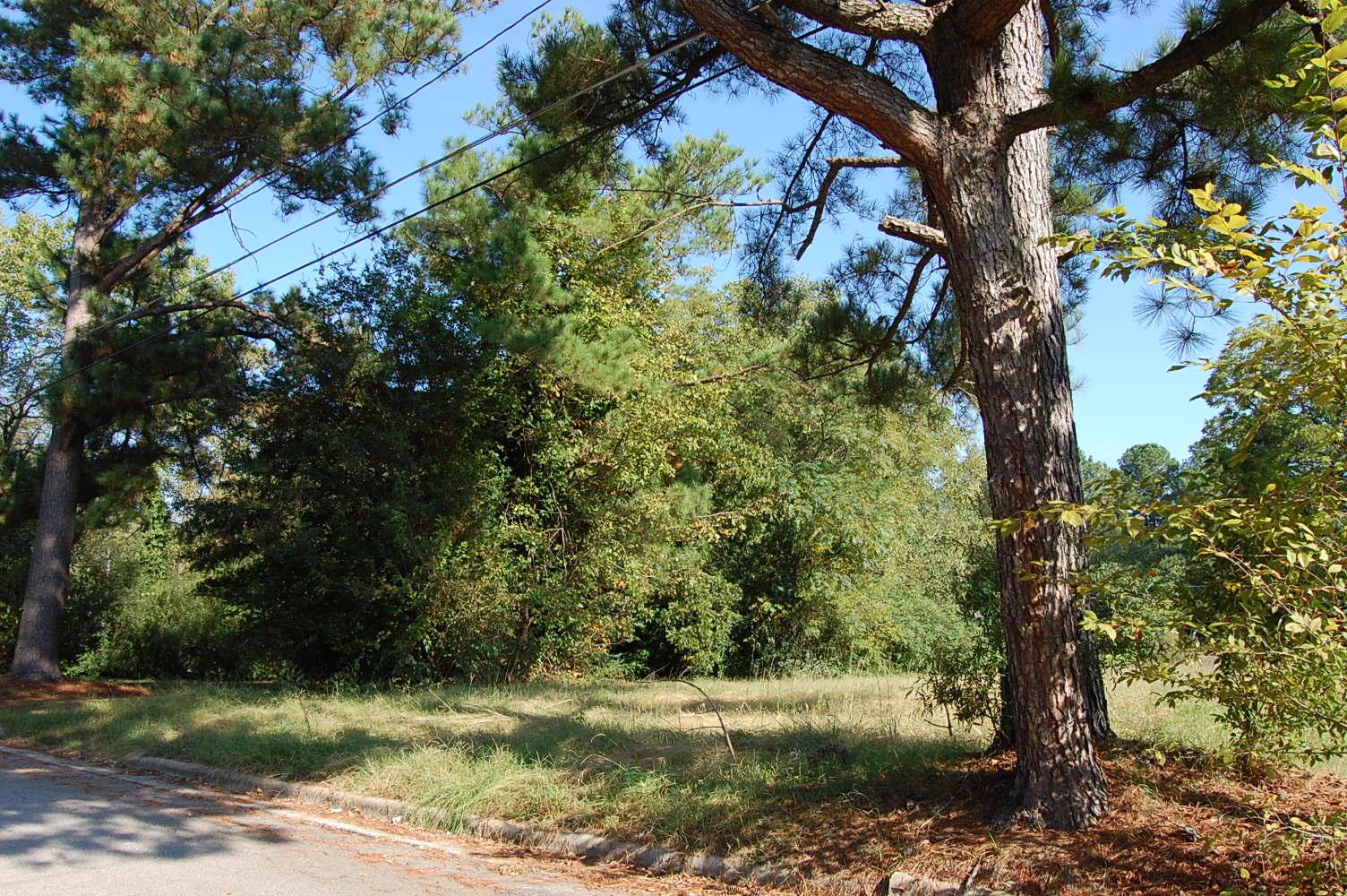 Green North Carolina Neighborhood Getaway - Image 5