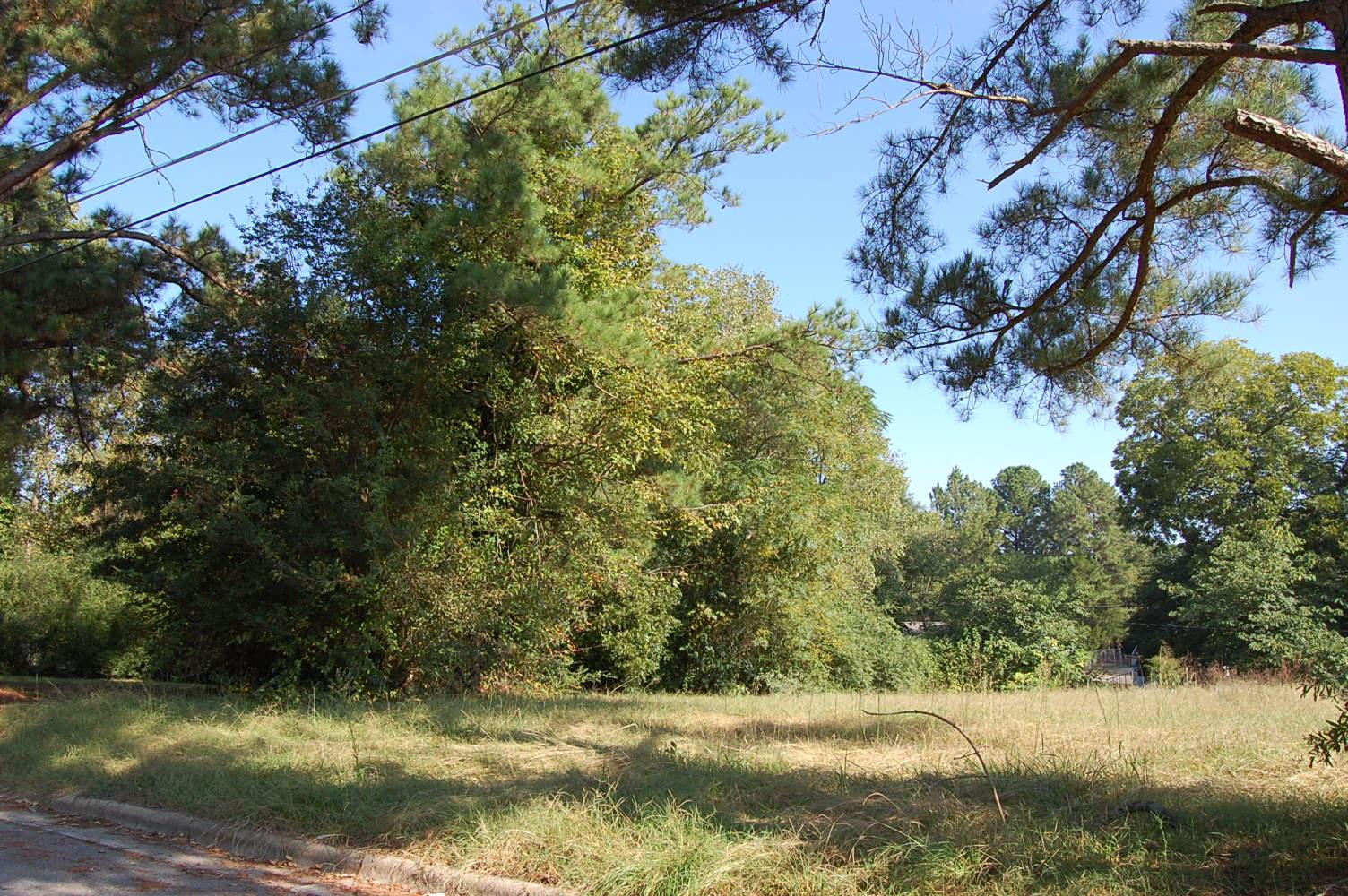 Green North Carolina Neighborhood Getaway - Image 1
