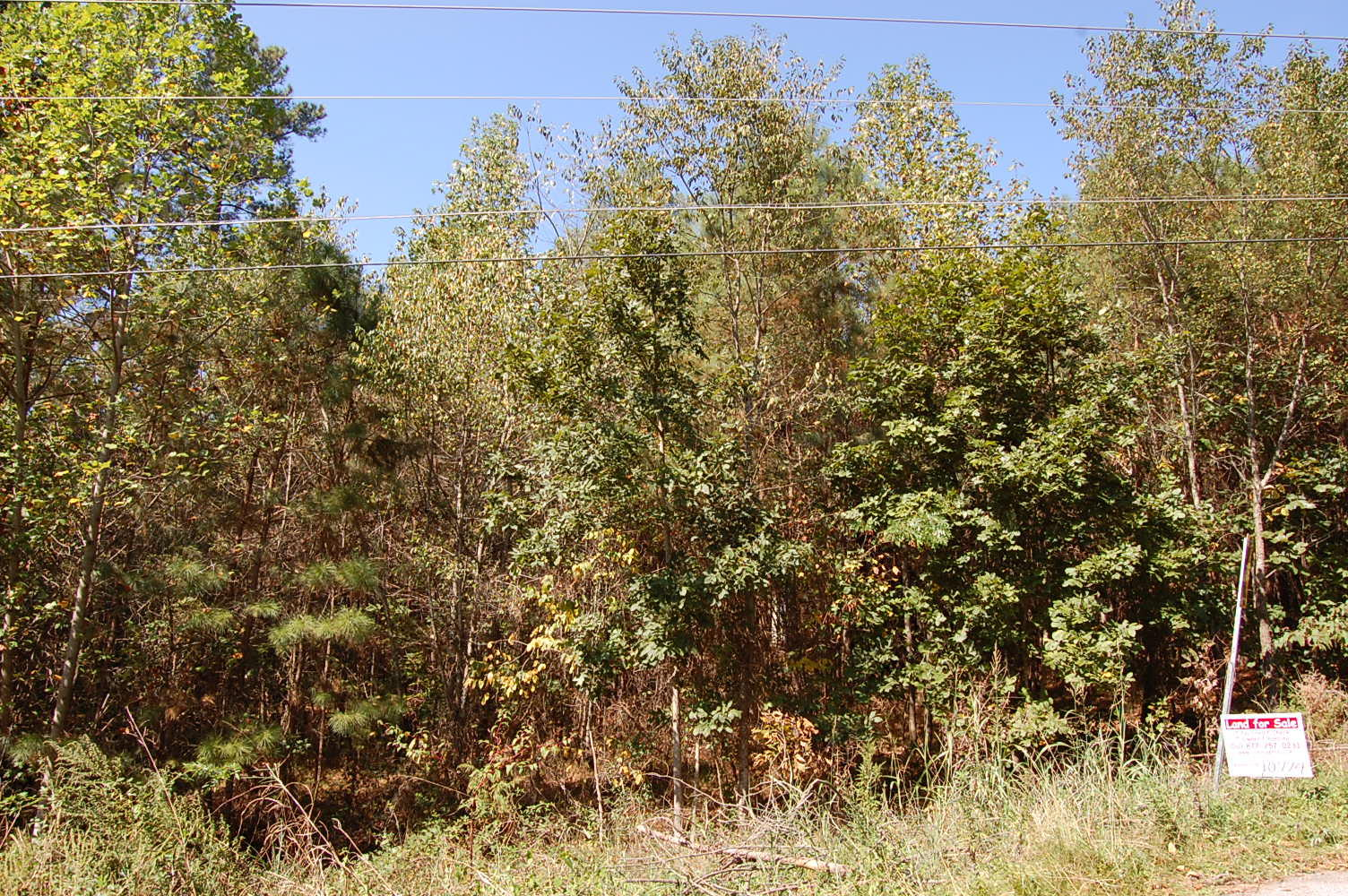 Large Residential Lot in Henderson - Image 0
