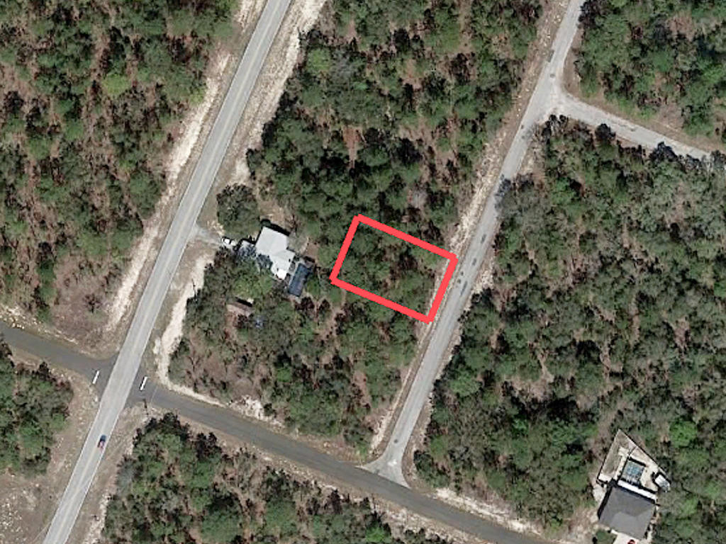 Nearly a Quarter acre in Citrus Springs - Image 2