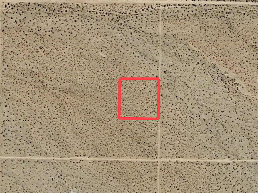 Desert Living on Expansive 2 Acres - Image 2