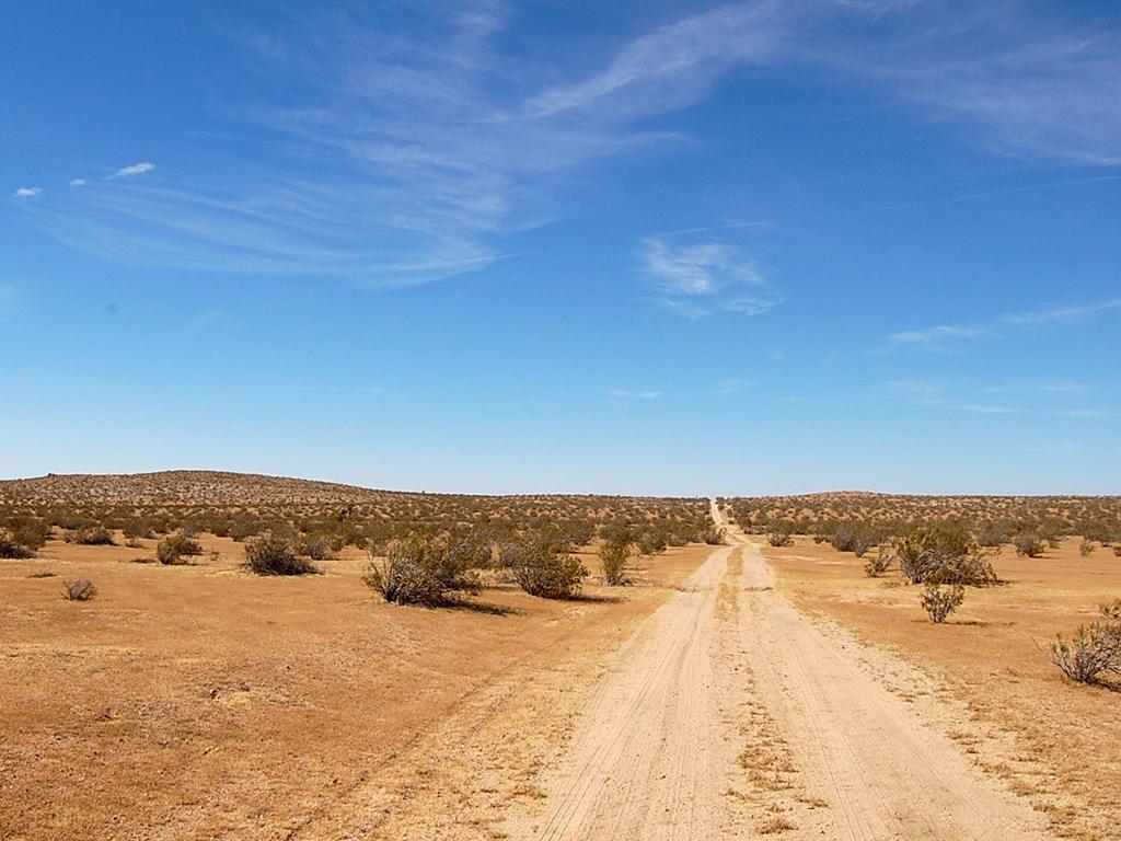 Desert Living on Expansive 2 Acres - Image 5
