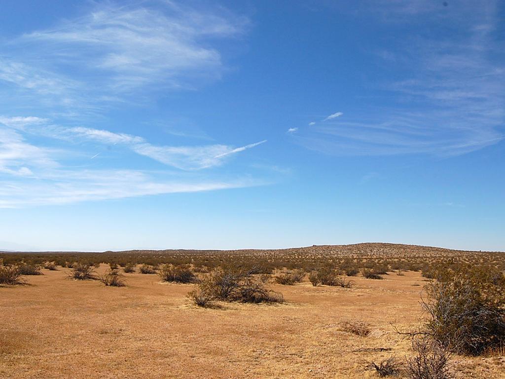 Desert Living on Expansive 2 Acres - Image 1