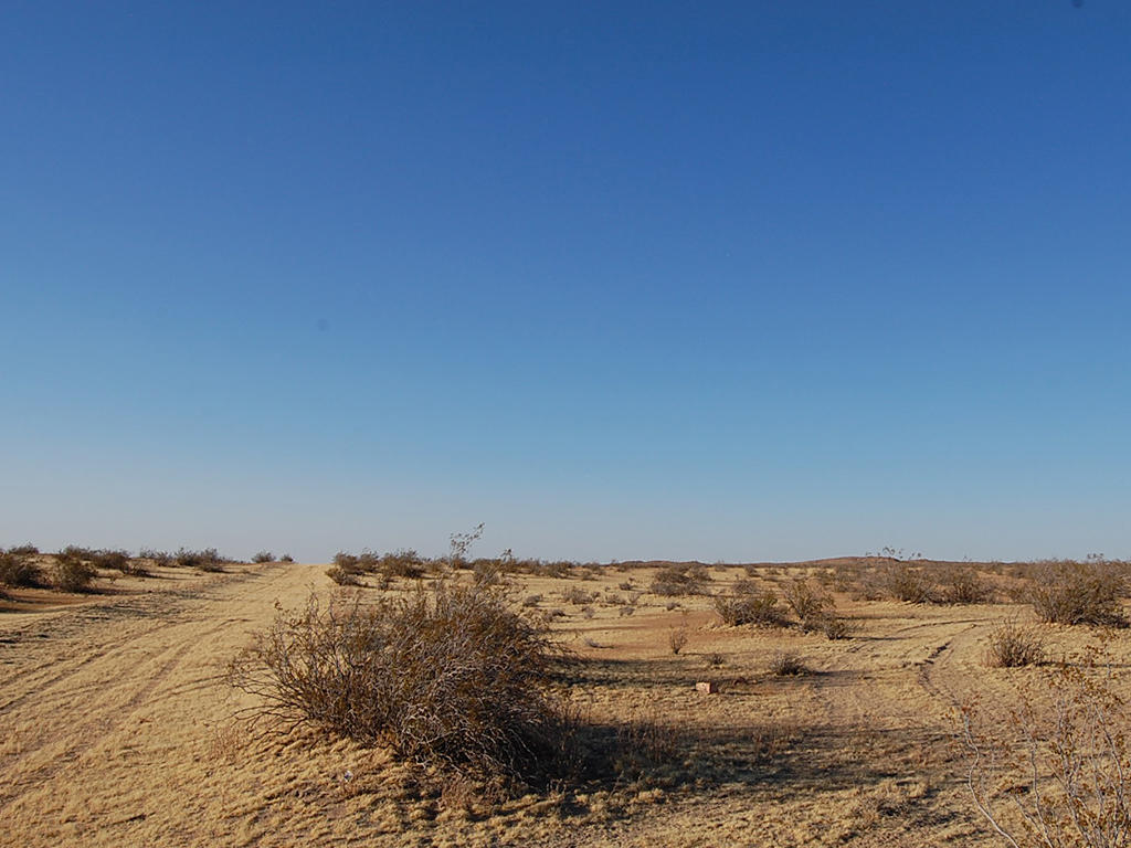 Spacious 2 Acres Under Miles of Blue Sky - Image 4