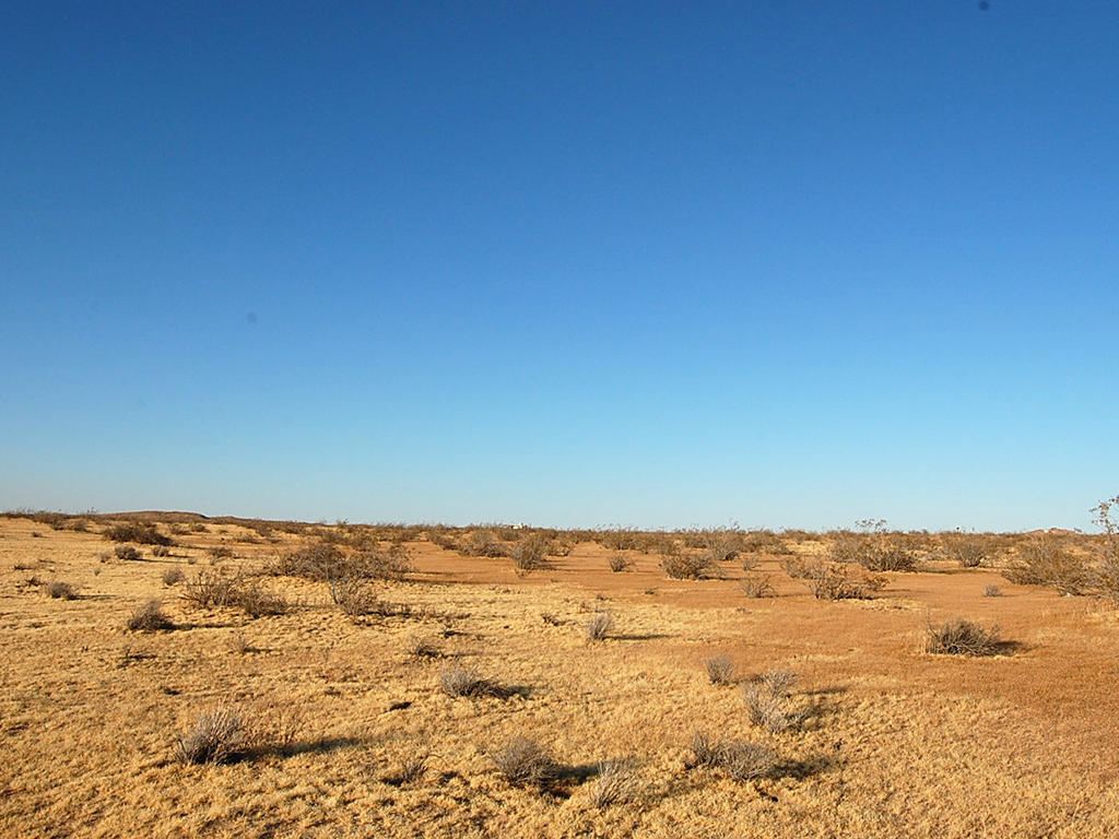 Spacious 2 Acres Under Miles of Blue Sky - Image 0