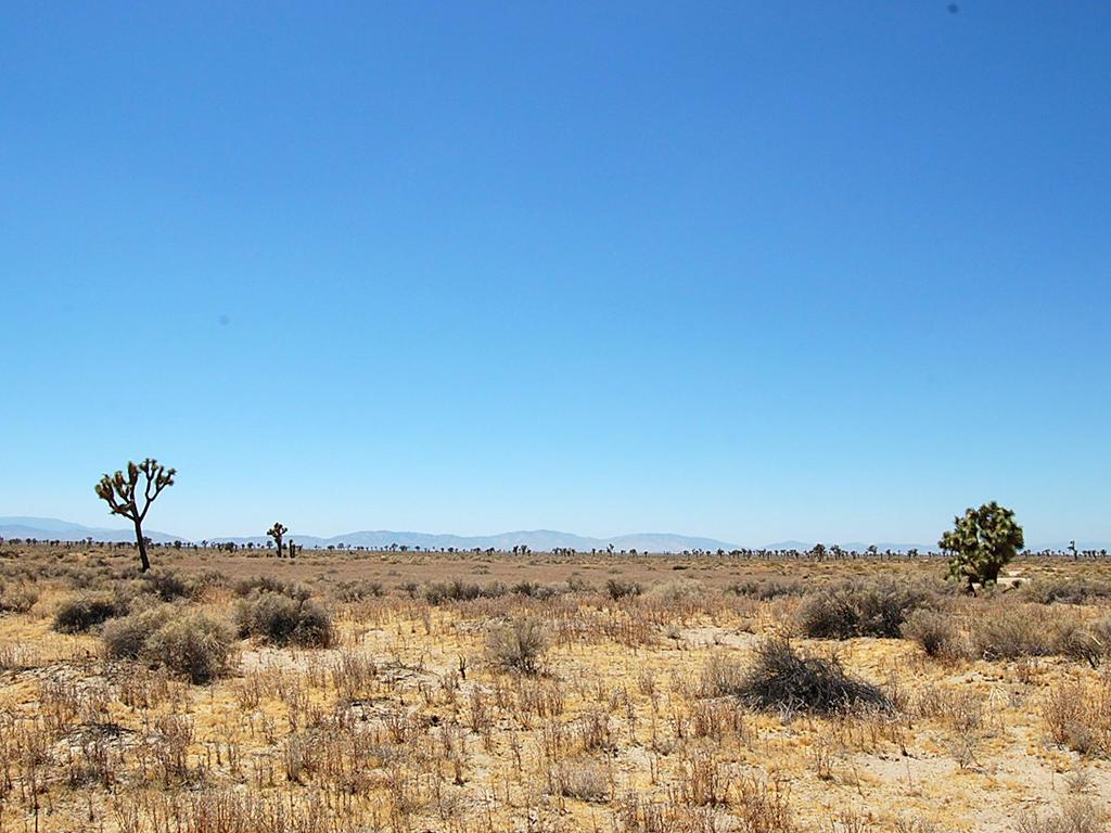Acreage Near Lake Los Angeles - Image 1