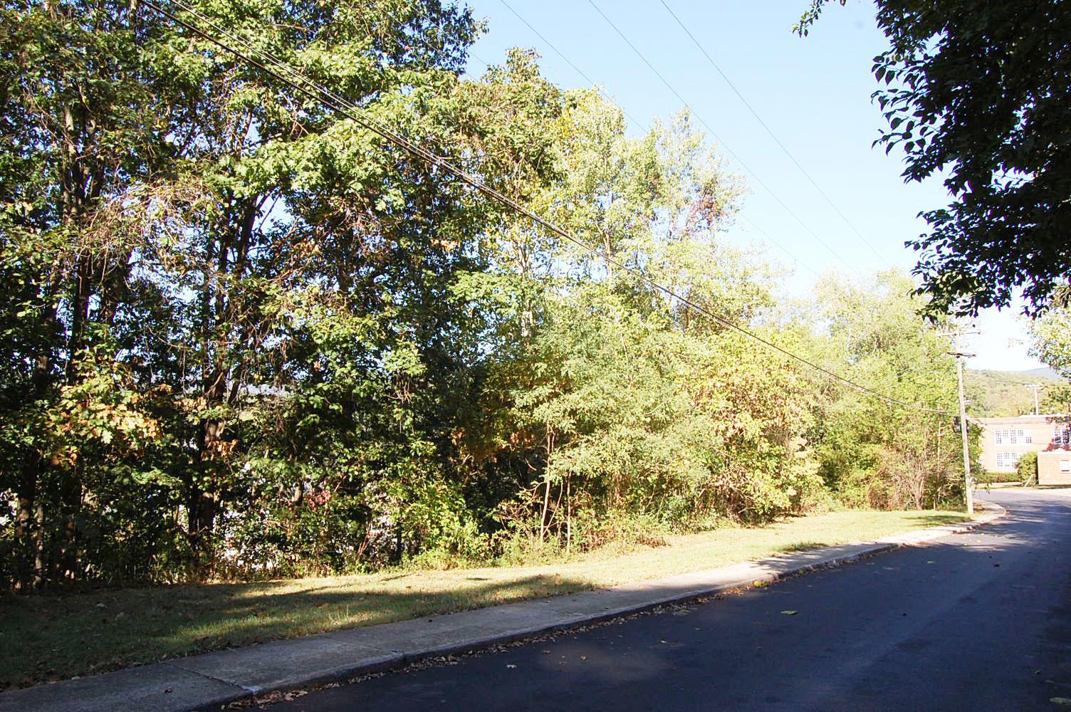 Sloped Quarter Acre in Scenic Virginia Community - Image 1