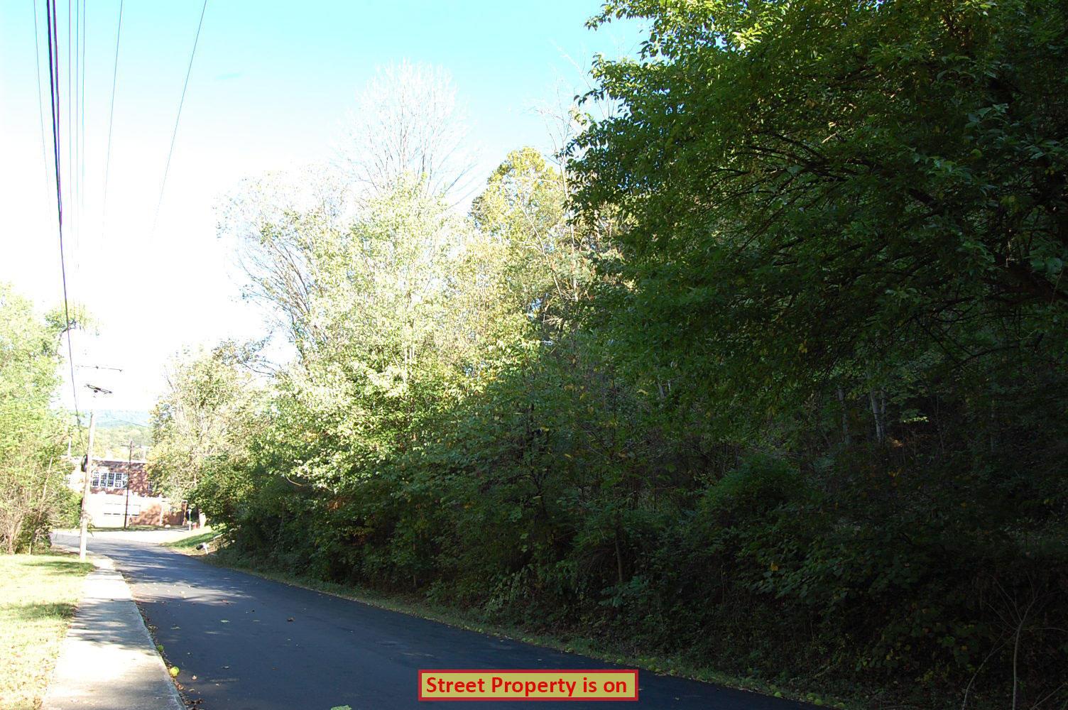 Sloped Quarter Acre in Scenic Virginia Community - Image 2