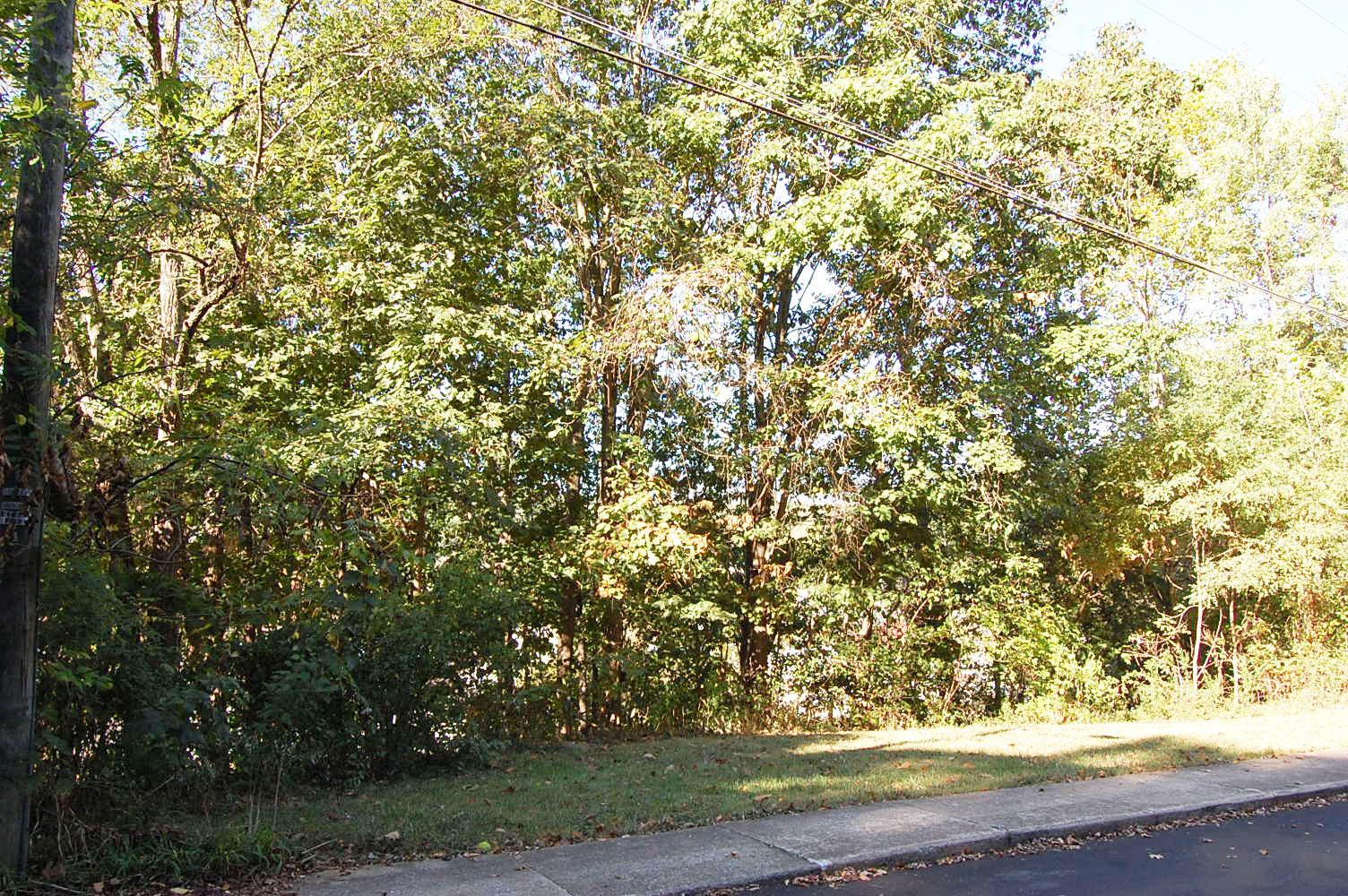 Sloped Quarter Acre in Scenic Virginia Community - Image 3