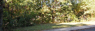 Sloped Quarter Acre in Scenic Virginia Community - Image 4