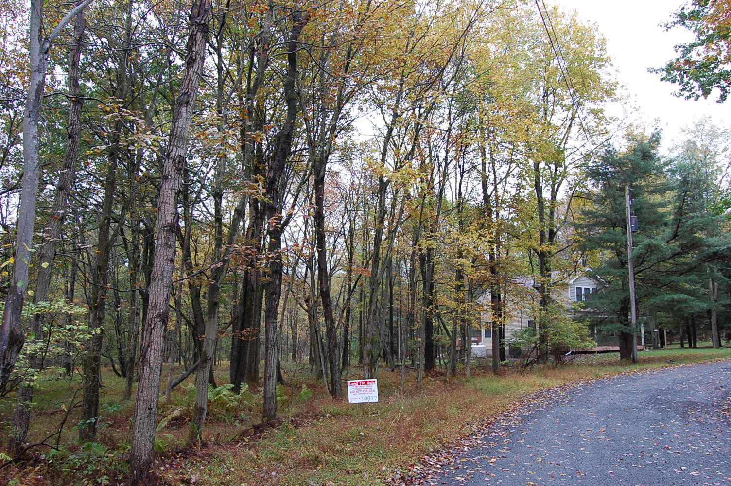 Eastern Pennsylvania Rural Double Lot - Image 3