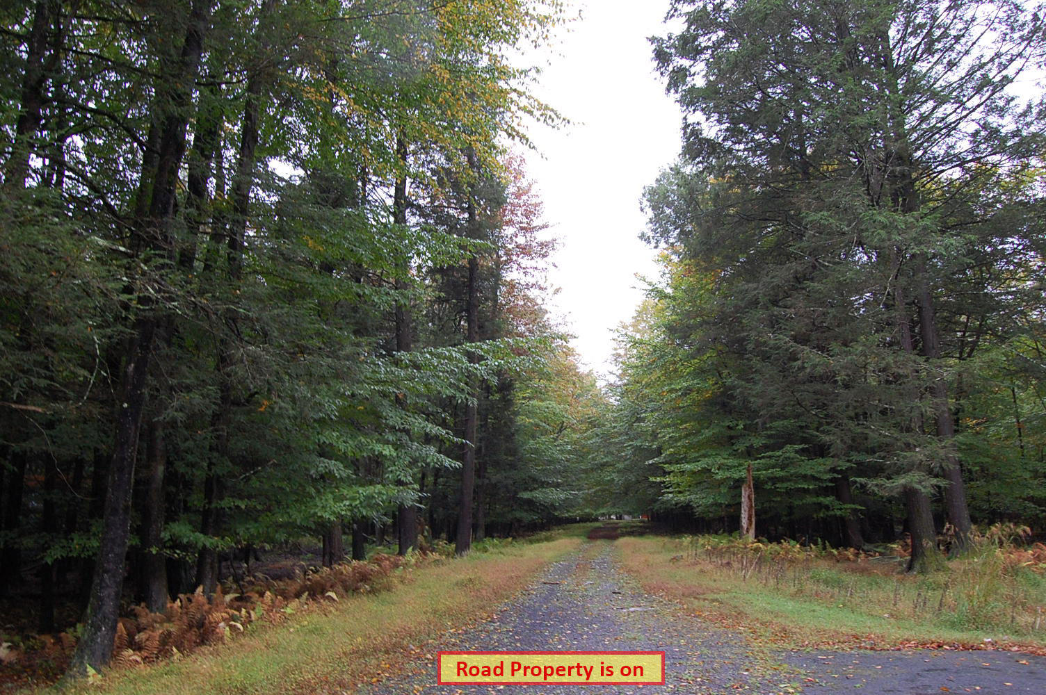 More Than Half Acre on Historic Land - Image 4