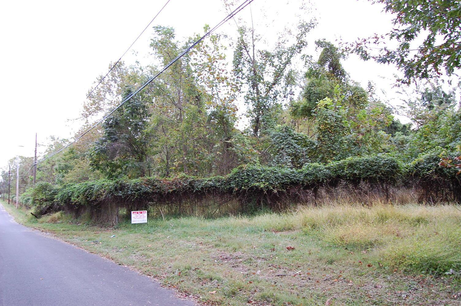 Small Property Nestled Near Silver Lake - Image 1