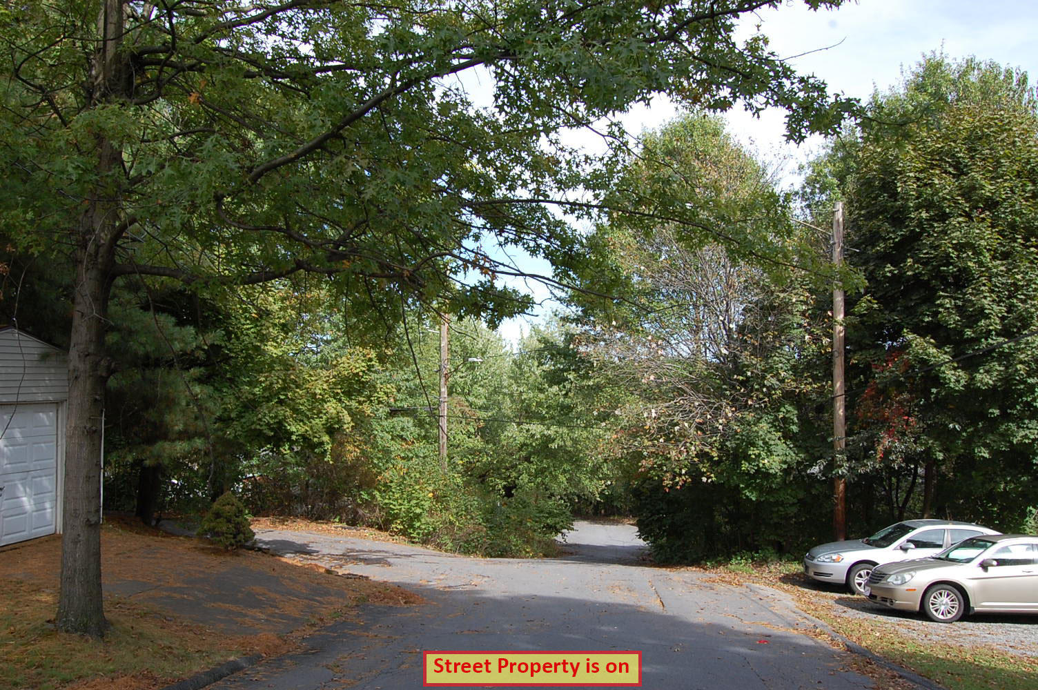 Rare Two Parcel Lot Sold as One in Vibrant Community - Image 7