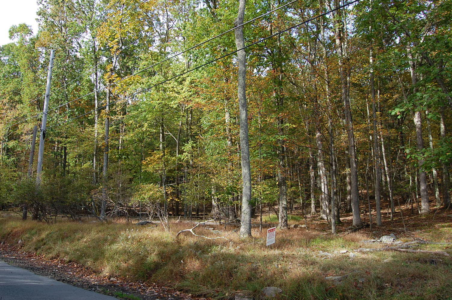 Pennsylvania Lot Just Steps From West Colang Lake - Image 1