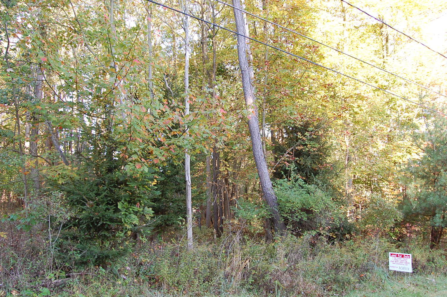 Great Parcel on the Outskirts of Jamestown NY - Image 5