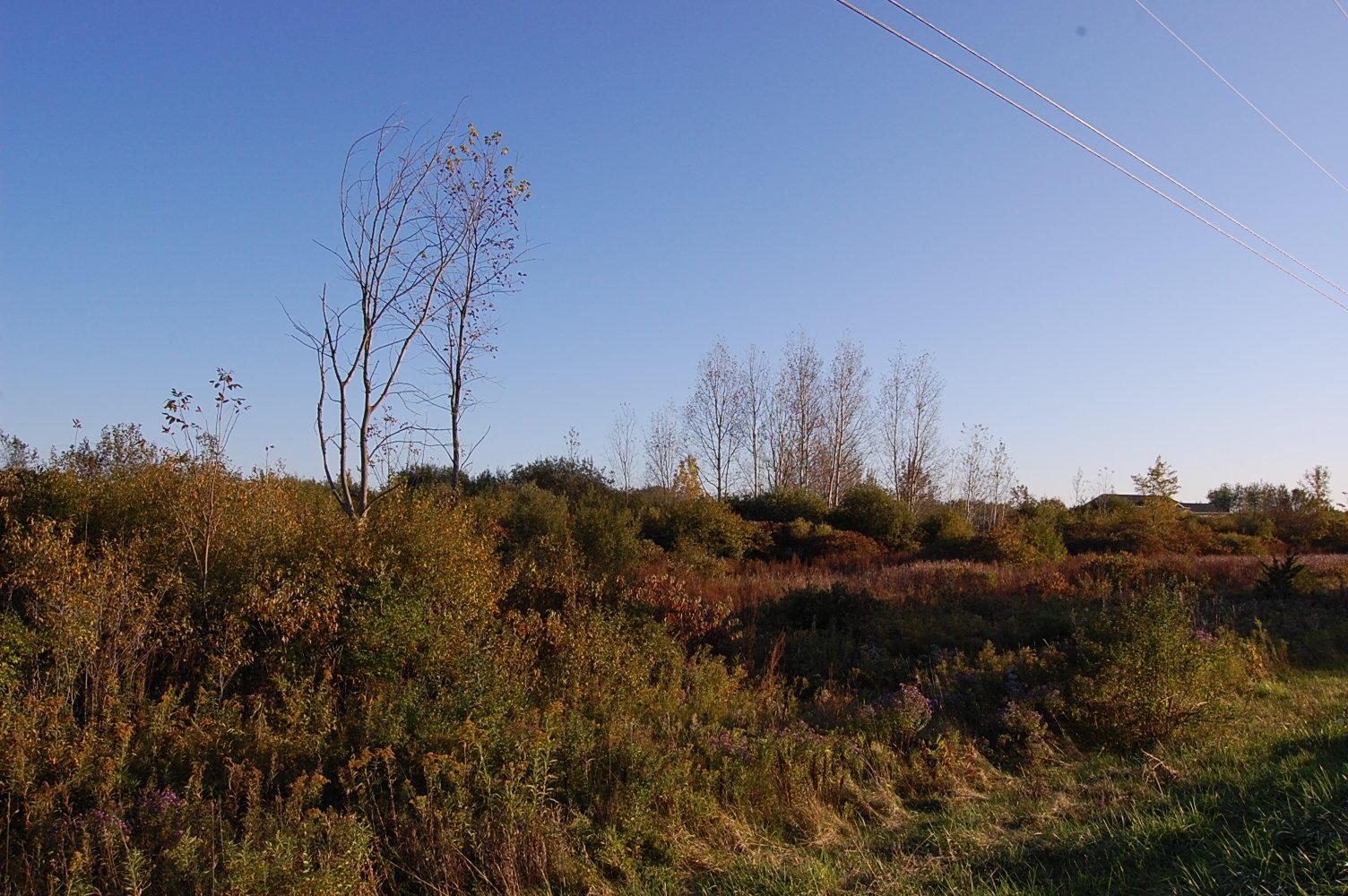Spacious 10 Acres in New York State Near Lake Ontario - Image 0
