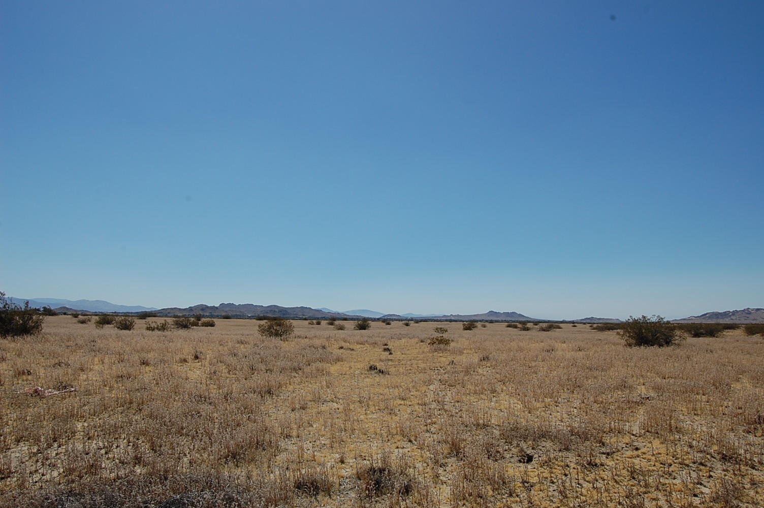2.497 Acres Outside Lake Los Angeles - Image 4