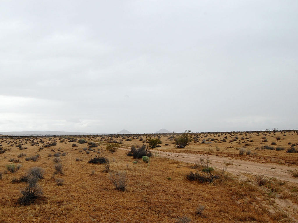 Over 2.5 Acres Near California City - Image 4