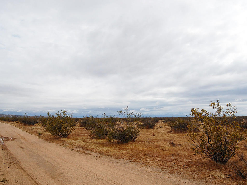 5 Acre Desert Rural Paradise Tract - Image 5