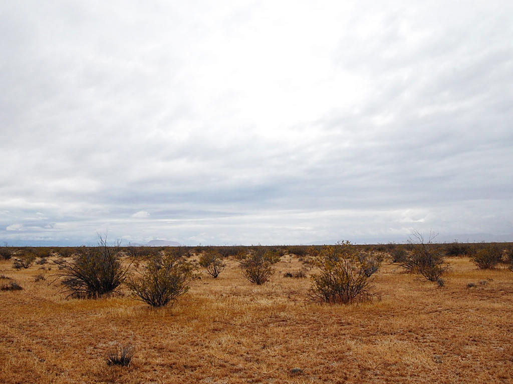 5 Acre Desert Rural Paradise Tract - Image 0