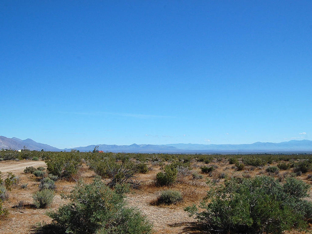 5 Desert Acres an Hour From Lancaster California - Image 5