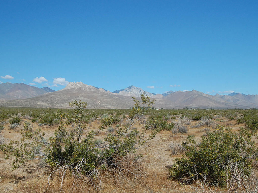 Five Acre Secluded Kern California Gem - Image 3