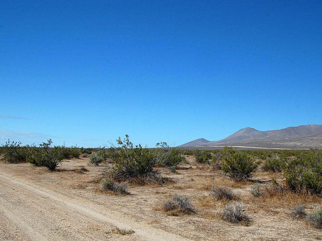 Own five cleared acres in sunny Central California - Image 4