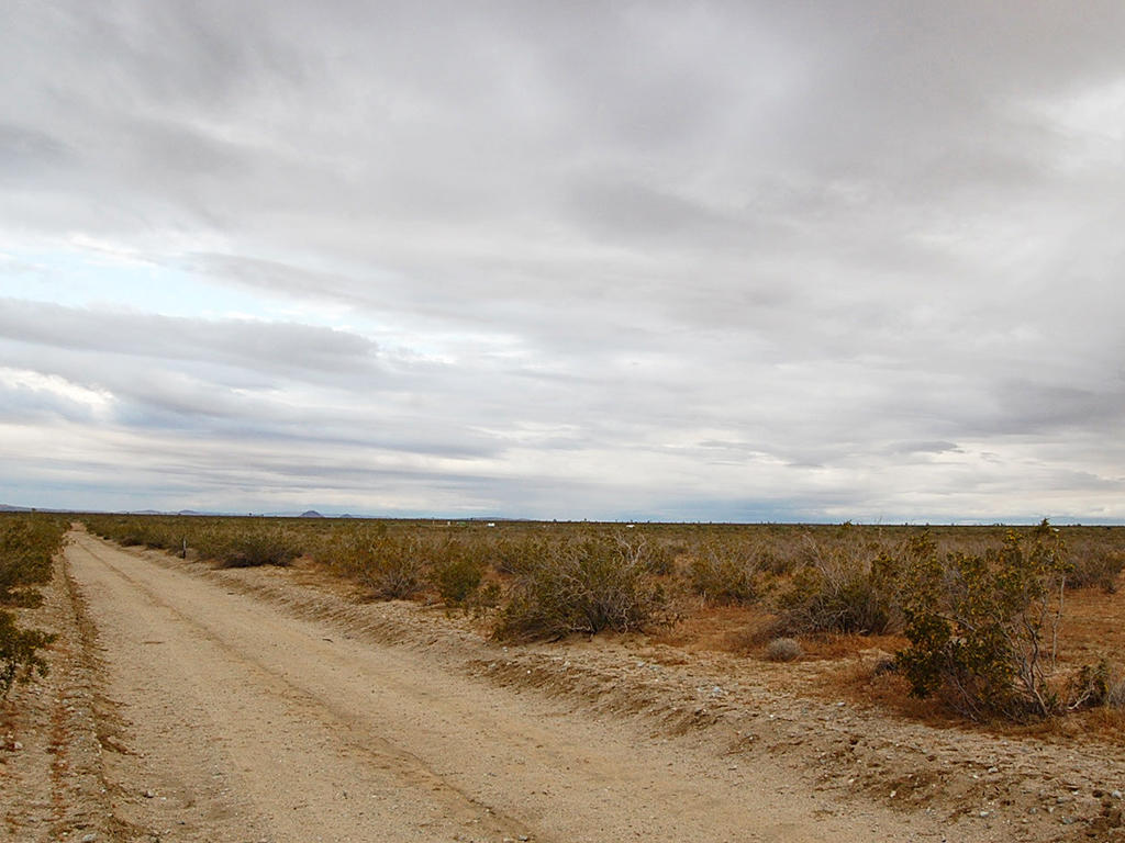 Agricultural 2 Acres on Flat Cleared Desert Land - Image 4