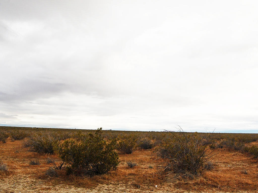 Agricultural 2 Acres on Flat Cleared Desert Land - Image 1