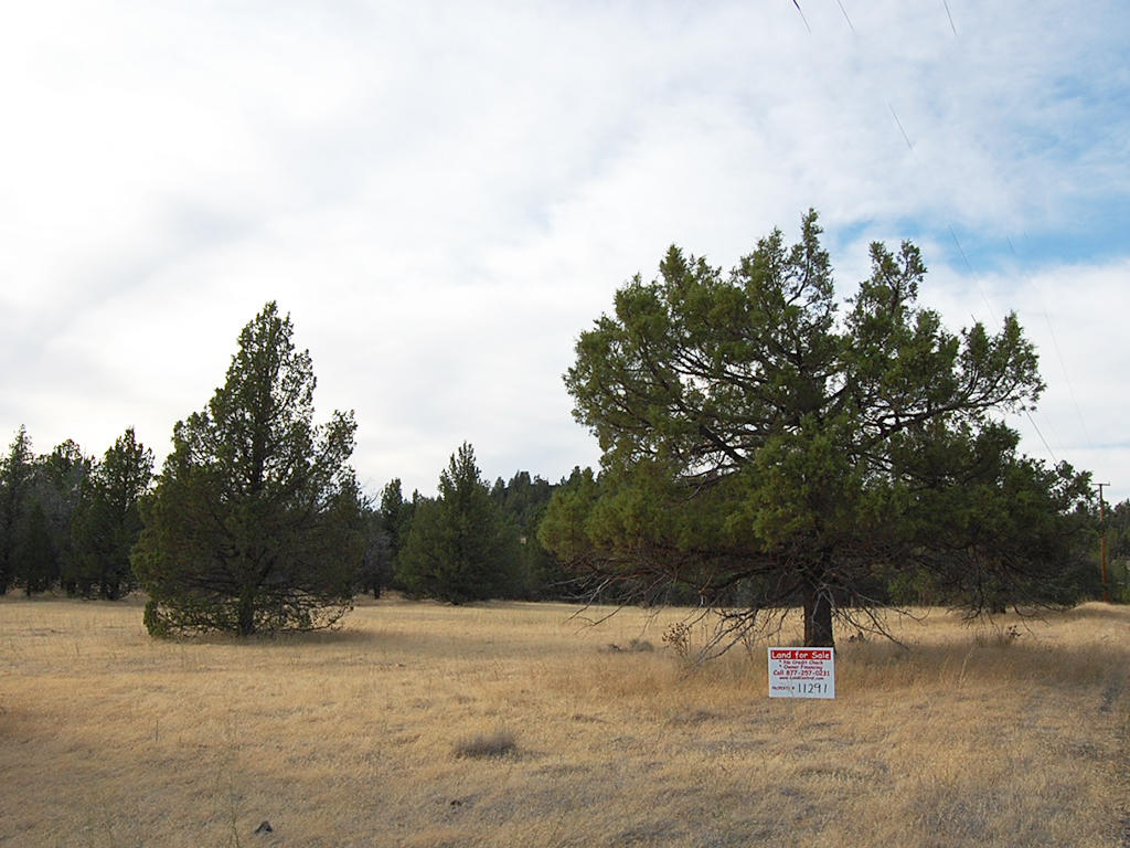 1.47 Acre Property Just North of Alturas - Image 1