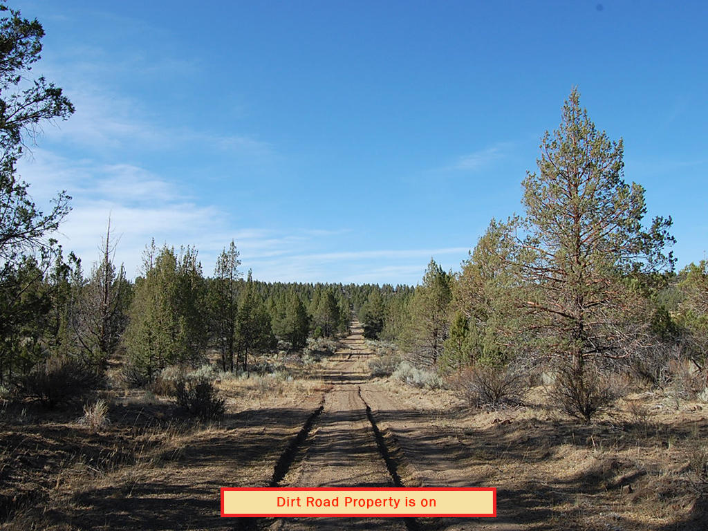 One and A Half Acre Modoc Residential Estate Property - Image 5