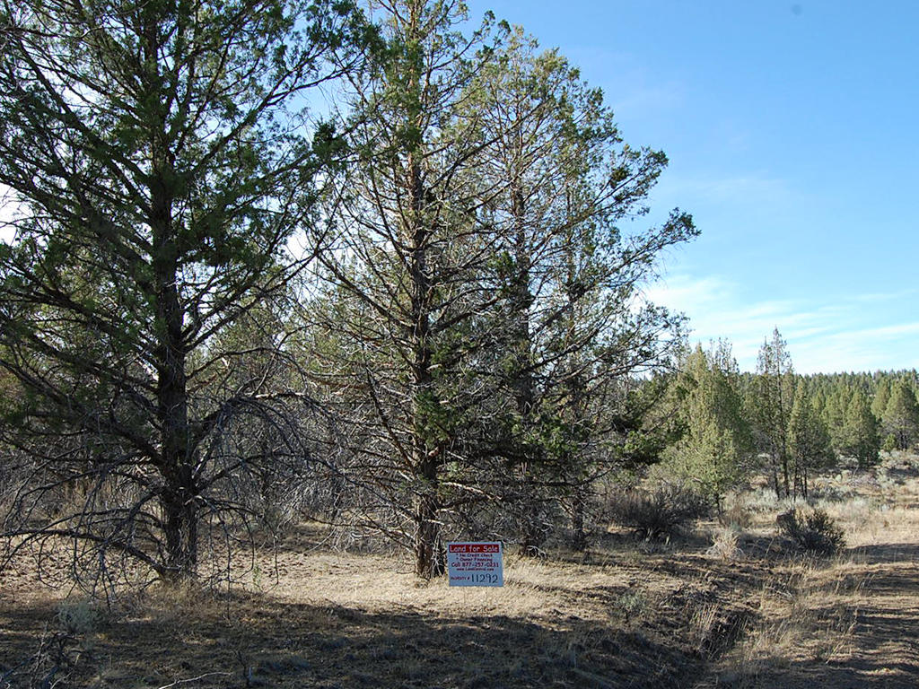One and A Half Acre Modoc Residential Estate Property - Image 1