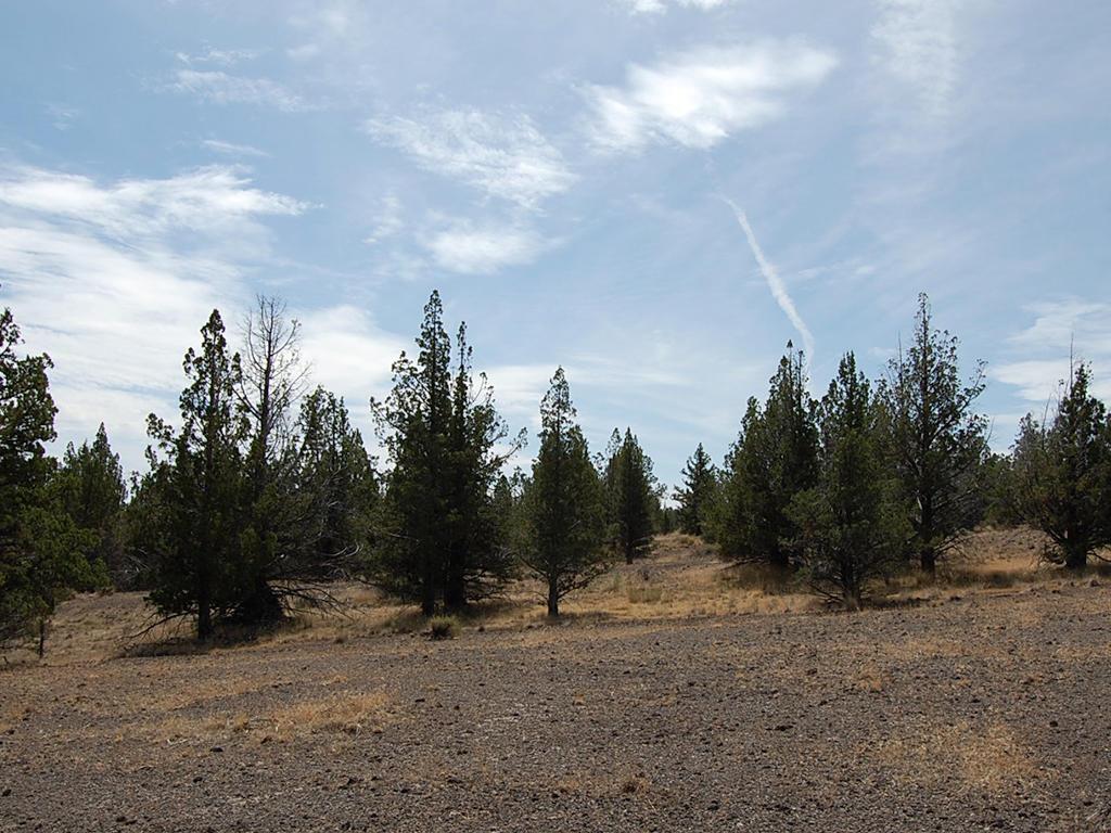 1.05 Acre Parcel About 5 Miles SW of Alturas - Image 4