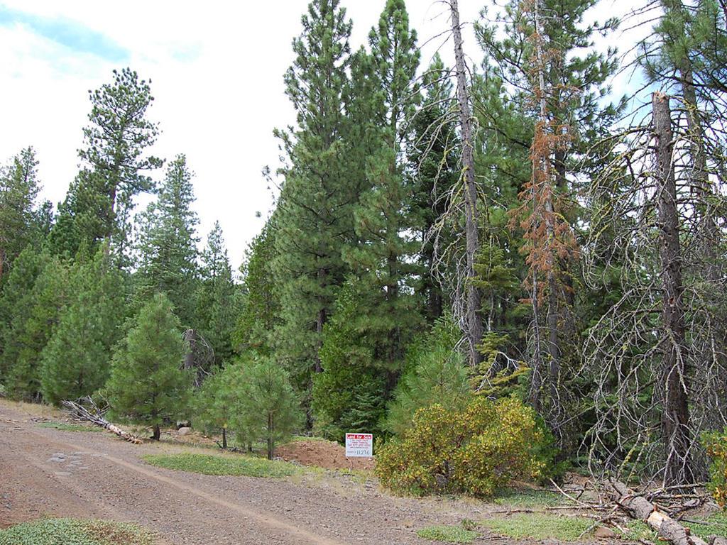 Sloped Northern California Retreat - Image 4