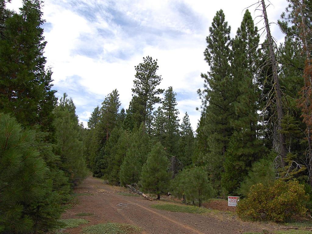 Sloped Northern California Retreat - Image 0