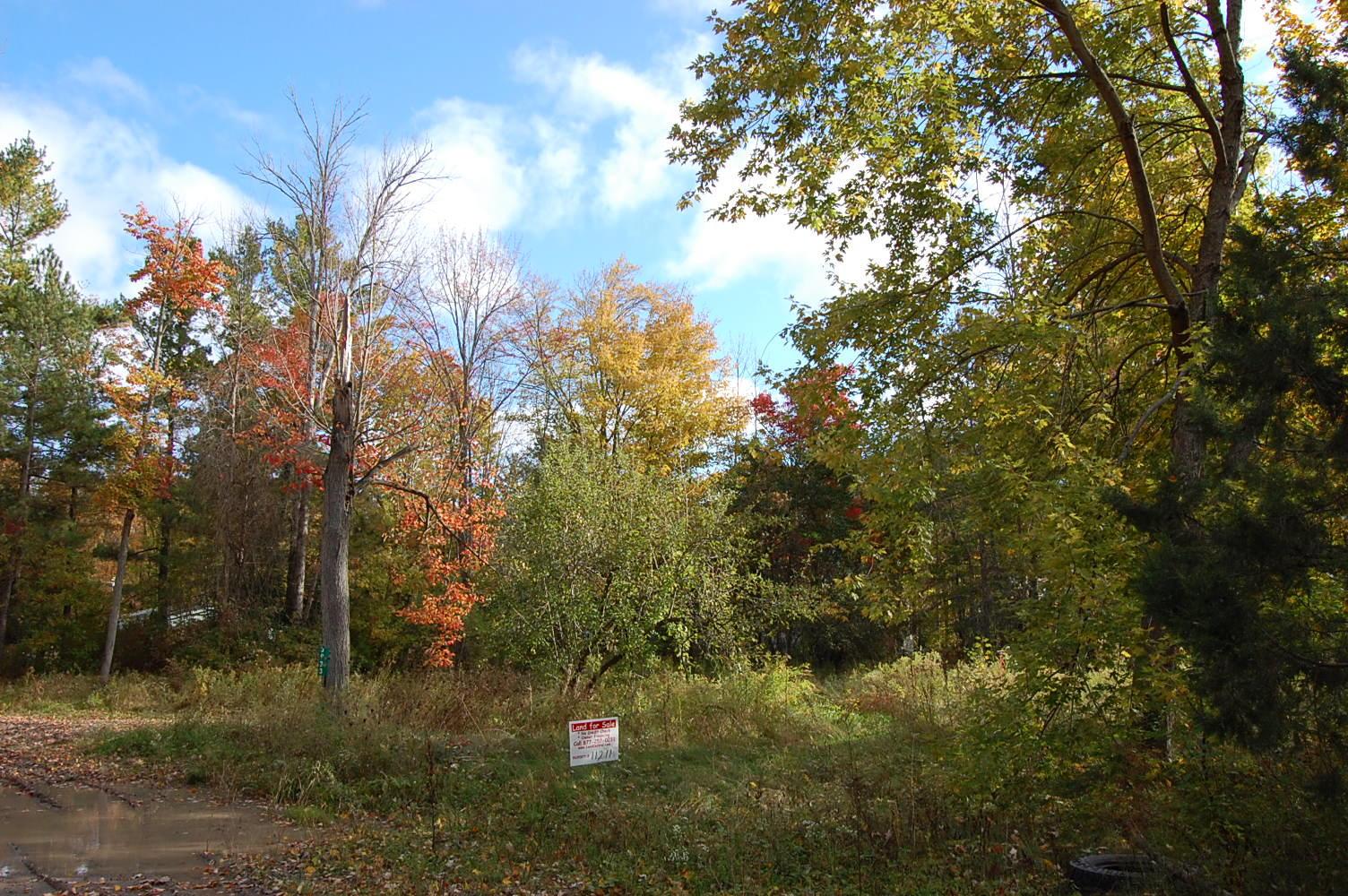 Rural Wixom Lake Michigan Property - Image 3