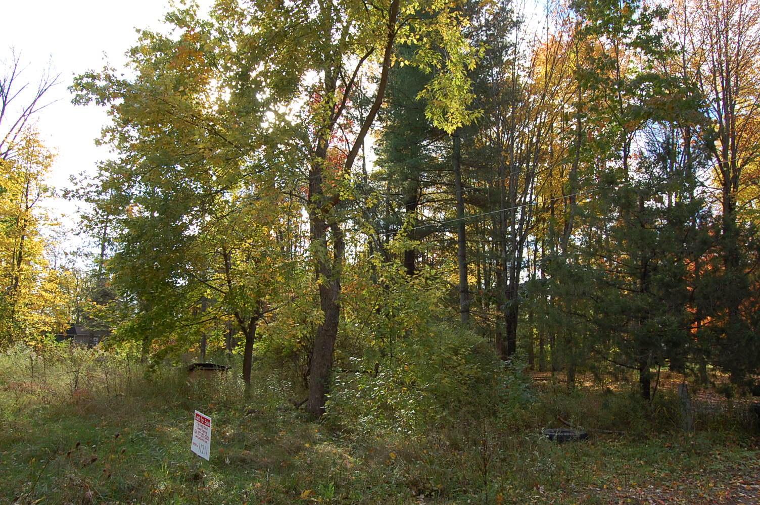 Rural Wixom Lake Michigan Property - Image 4