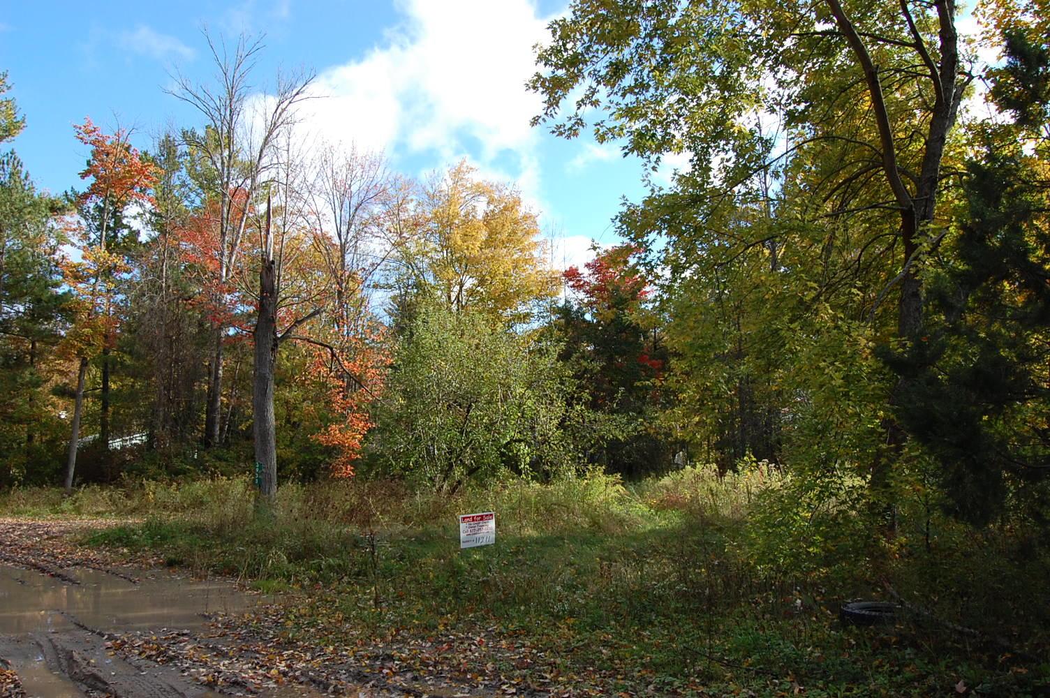 Rural Wixom Lake Michigan Property - Image 0