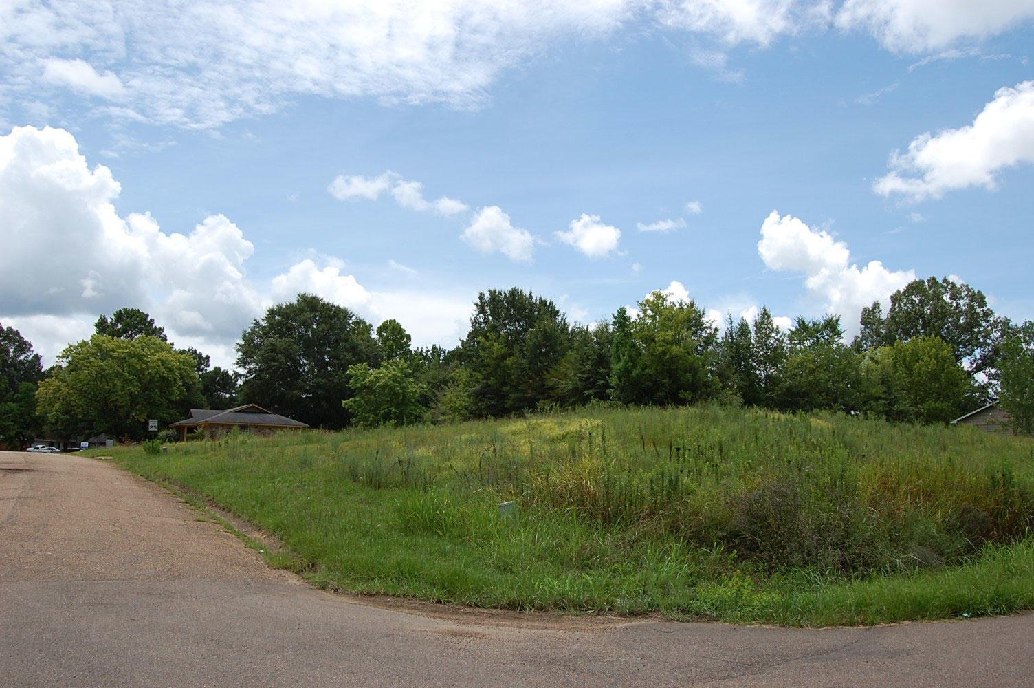 Corner Lot in Residential Neighborhood - Image 4