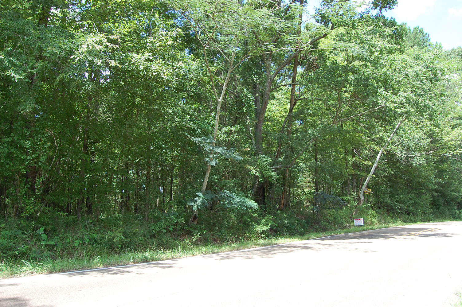 Treed Acreage in Beautiful Mississippi Countryside - Image 2