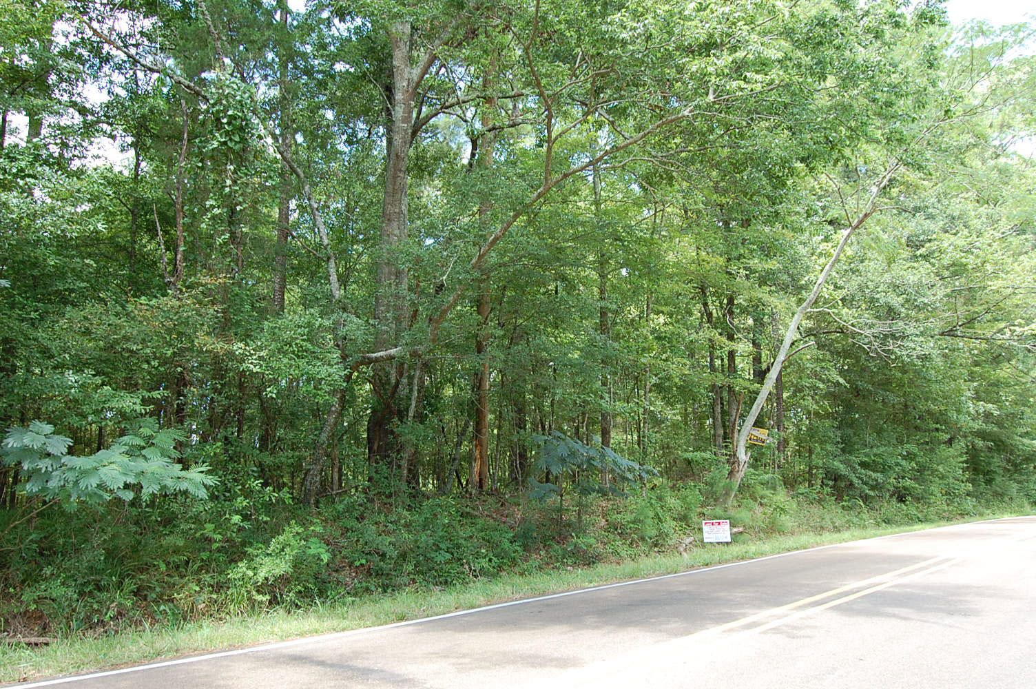Treed Acreage in Beautiful Mississippi Countryside - Image 0