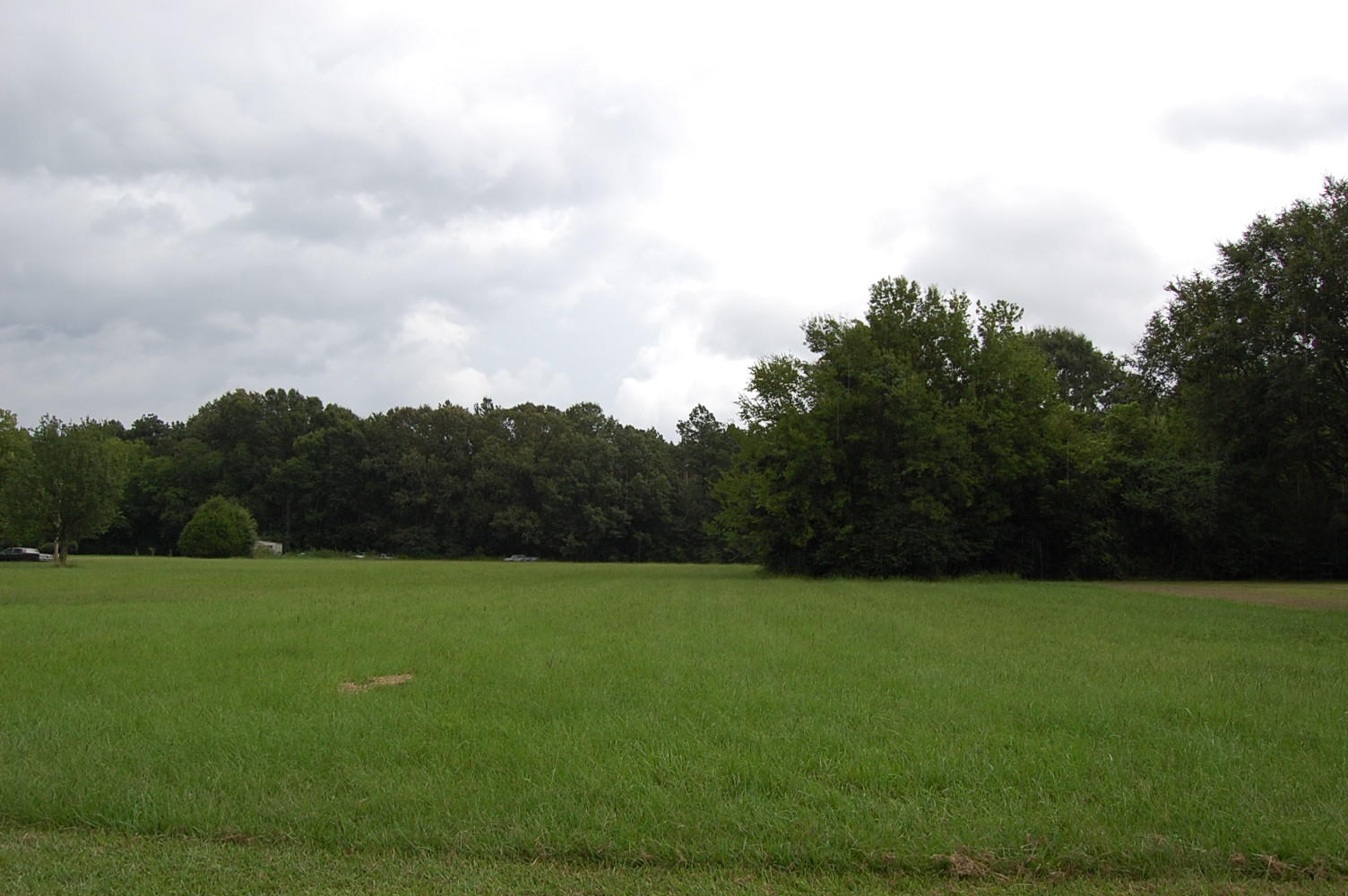 Almost an Acre on Dixon Drive - Image 4