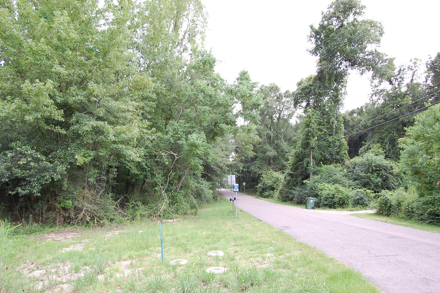 Wonderful Acreage on the Edge of Hattiesburg, Mississippi - Image 3