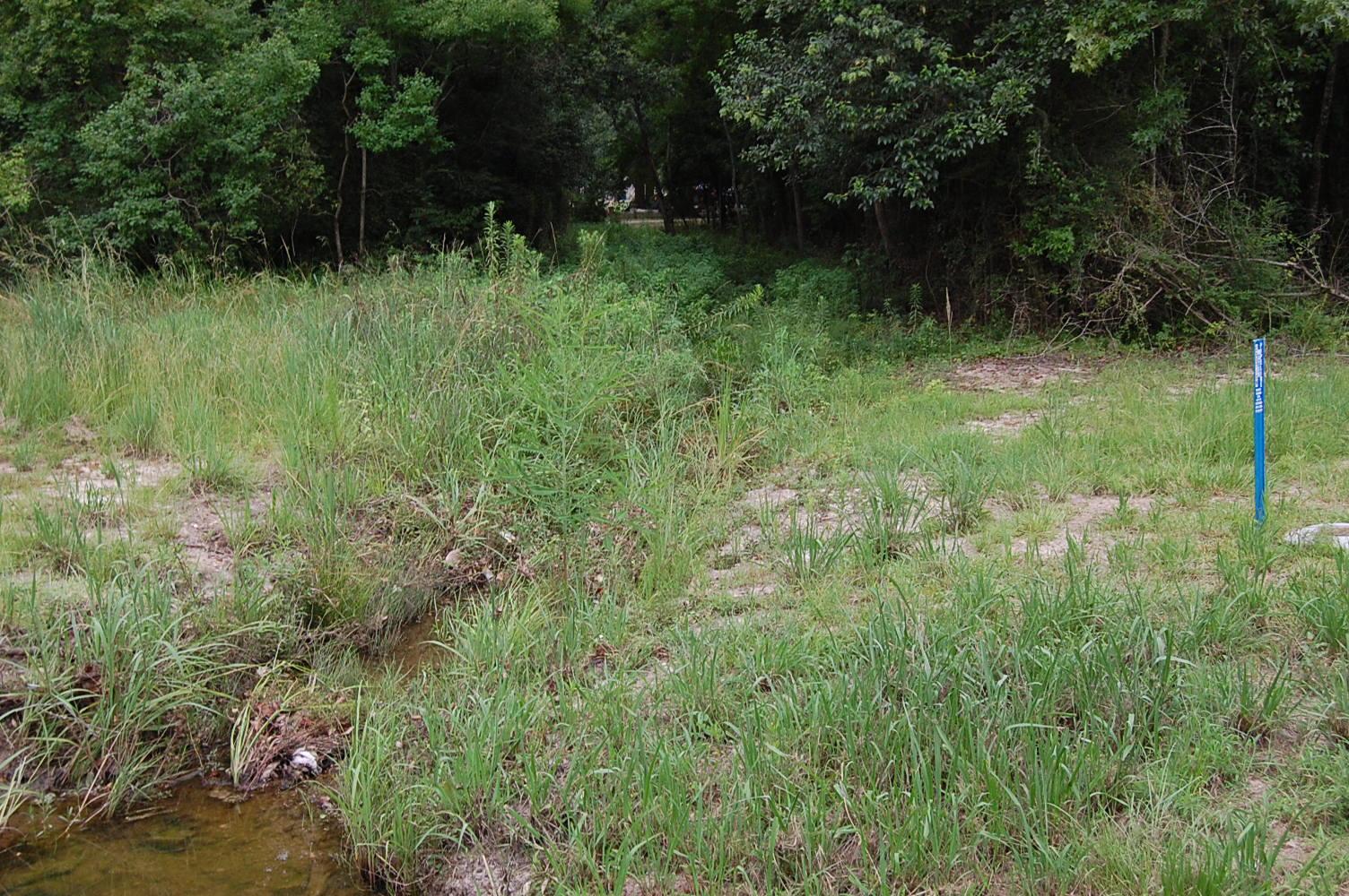 Wonderful Acreage on the Edge of Hattiesburg, Mississippi - Image 5